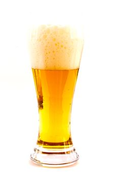 Free Lager Beer Stock Photography - 18524832