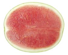 Free Watermelon Stock Photography - 18525482