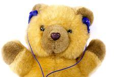 Free Teddy Bear Royalty Free Stock Photos - 18526808