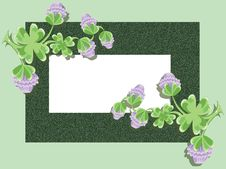 Free Background With Clover Stock Photo - 18527210