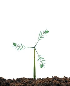 Free Windmill Plant Royalty Free Stock Photography - 18527707