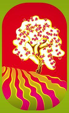 Free Magic Spring Tree Royalty Free Stock Photography - 18528977