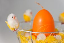 Free Easter Chick Stock Photography - 18529942
