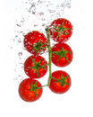 Free Fresh Tomatoes With Water Bubbles Isolated On Whit Stock Photos - 18539733