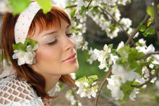 Free Girl And Spring Blossom Stock Images - 18530114