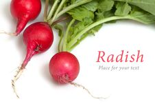 Three Radishes Stock Photos