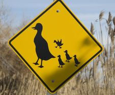 Free Ducks Crossing Sign Royalty Free Stock Photo - 18531395