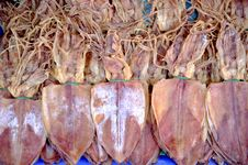 Free Dried Squid Stock Photography - 18532682