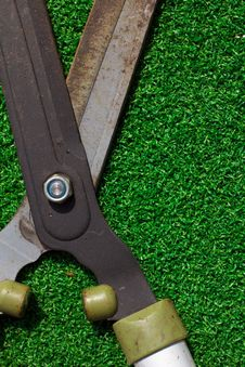 Free Scissors Cut The Grass Royalty Free Stock Image - 18533856