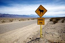 Free Burro Crossing Royalty Free Stock Image - 18534636