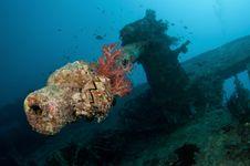 Free SS Thistlegorm Battle Gun Stock Photos - 18534773