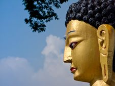 Free Budha S Profile Stock Images - 18536284