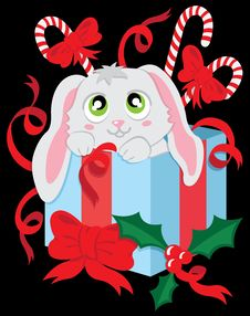The Christmas Rabbit In The Box Stock Photography