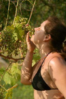 Free Girl Eat Grapes On Tree Stock Photo - 18538040