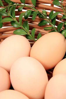 Free Eggs Royalty Free Stock Photography - 18538527