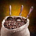 Free Sack Of Coffee Beans And Scoop. Stock Photography - 18548662