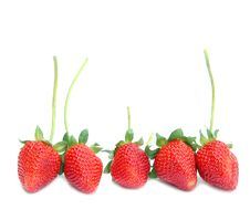 Free Fresh Strawberry Royalty Free Stock Images - 18543109