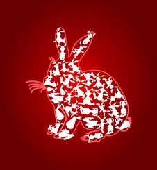 Free Rabbit3 Royalty Free Stock Image - 18543396