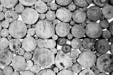 Free Set Of Wood In Black And White Color Royalty Free Stock Photo - 18543685