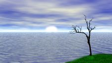 Free 3D Model Of The Ocean With Tree Stock Photos - 18546603