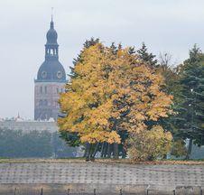 Free Autumn. Stock Photo - 18547130
