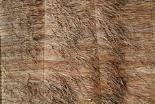 Free Reed Fence Stock Photography - 18548022