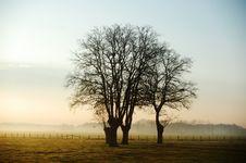 Free Morning Landscape Stock Photos - 18548543