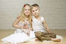 Young Smiling Couple With Kitten Sphynx Royalty Free Stock Photos