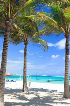 Free Tropical Beach Stock Photos - 18549003