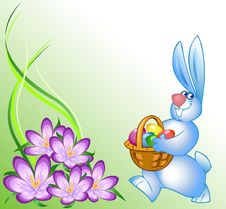 Free Easter Bunny Stock Images - 18549914