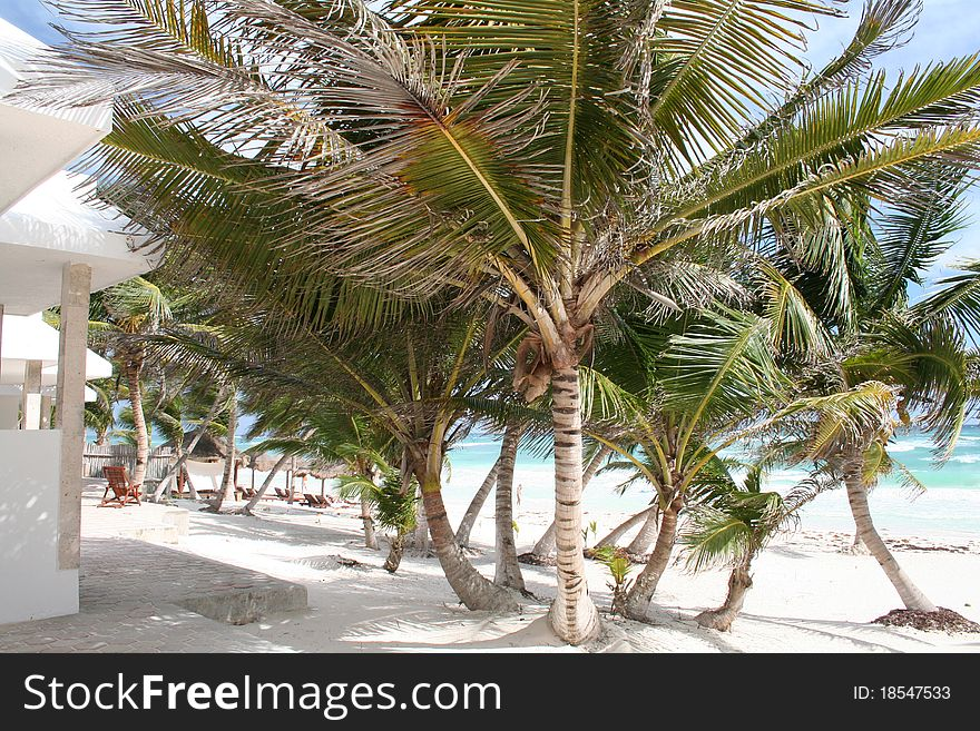 Luxurious Holiday Resort in Tulum Beach - Mexico