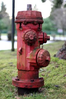 Free Rusty Fire Hydrant Royalty Free Stock Photography - 18551177