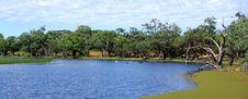 Free Banrock Station Wetlands Stock Images - 18553554