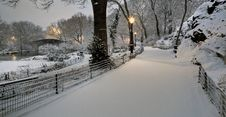 Free Central Park In Snow Storm Stock Photo - 18554550