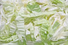 Free Green Cabbage Royalty Free Stock Photo - 18554895