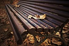 Wood Bench With Autumn Leaves Stock Image