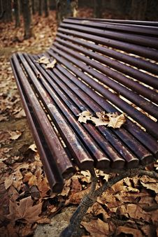 Free Wood Bench With Autumn Leaves Stock Images - 18555514