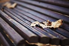 Free Wood Bench With Autumn Leaves Stock Image - 18555681