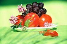 Free Fruit, Clover, Chili Royalty Free Stock Photo - 18555685