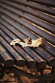 Wood Bench With Autumn Leaves Stock Photography