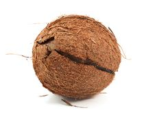 Free Coconut Royalty Free Stock Photos - 18555808
