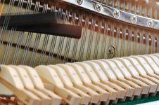 Free Adjusting Piano Pitch Royalty Free Stock Image - 18558546