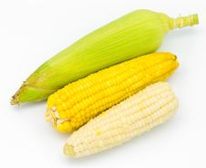 Free Fresh Corn Royalty Free Stock Image - 18559506