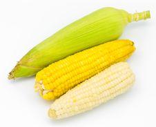 Free Fresh Corn Royalty Free Stock Image - 18559506