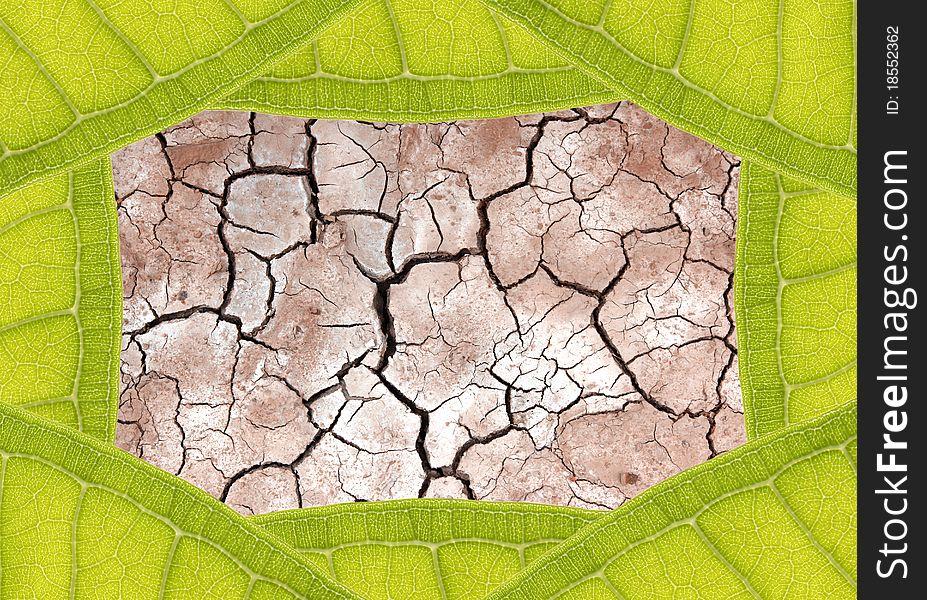Dry ground in leaf frame