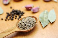 Free Spices Stock Image - 18560641