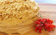 Free Caramel Medovik Cake Royalty Free Stock Image - 18561626