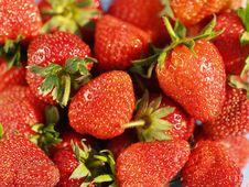 Free Strawberry Stock Photo - 18562350