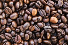 Free Coffee Beans Royalty Free Stock Photo - 18566815