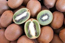 Free Kiwi Stock Image - 18569251